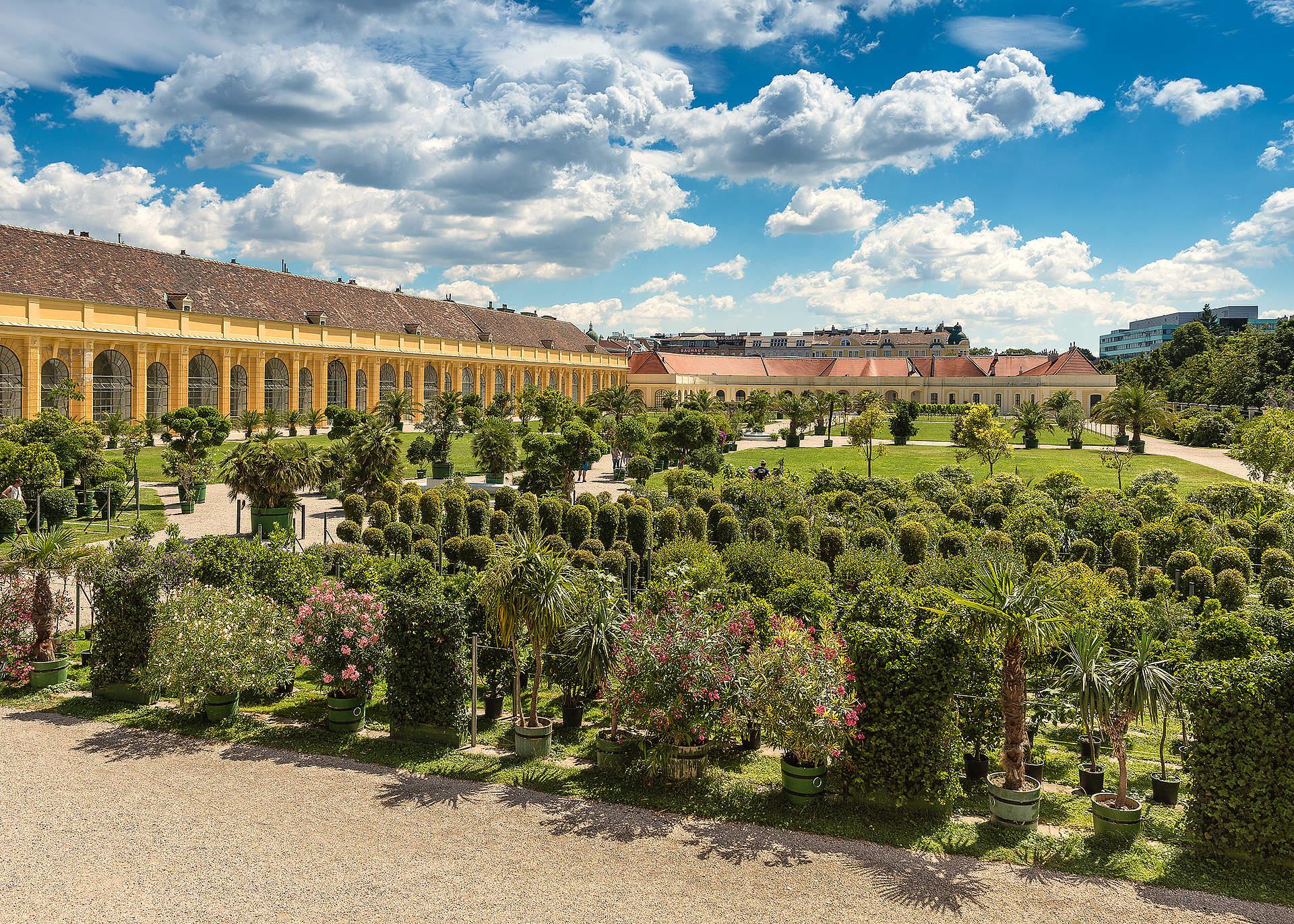 Orangerie Und Weingarten